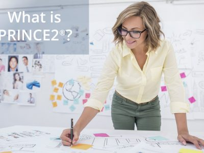 Project Management With PRINCE2 Principles Explained Dublin