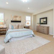 Tranquil Bedroom Environment